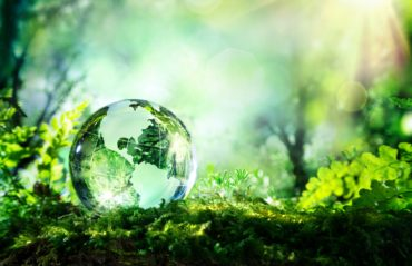 Covid-19: ¿Por qué son importantes los materiales sostenibles en construcción?
