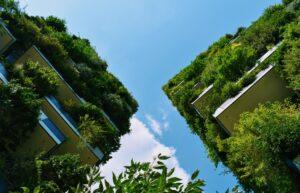 Ventajas de los jardines verticales o colgantes